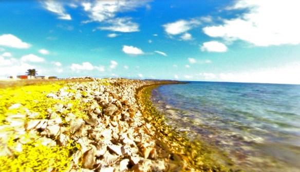 los roques 5 blog