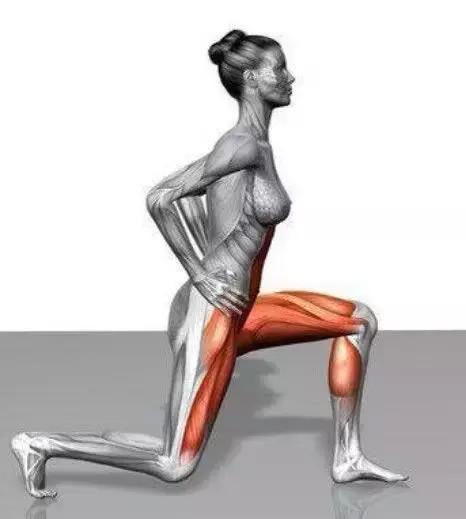 箭步蹲,最重要的力量訓練動作之一,鍛煉腿臀必備!