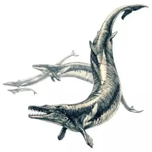 1.5億年前的侏羅紀時代,橫行海上的七種重量級巨獸