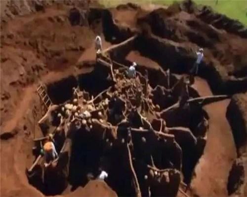 男子把10噸水泥注入螞蟻巢穴,挖開後眼前一幕讓人不可思議