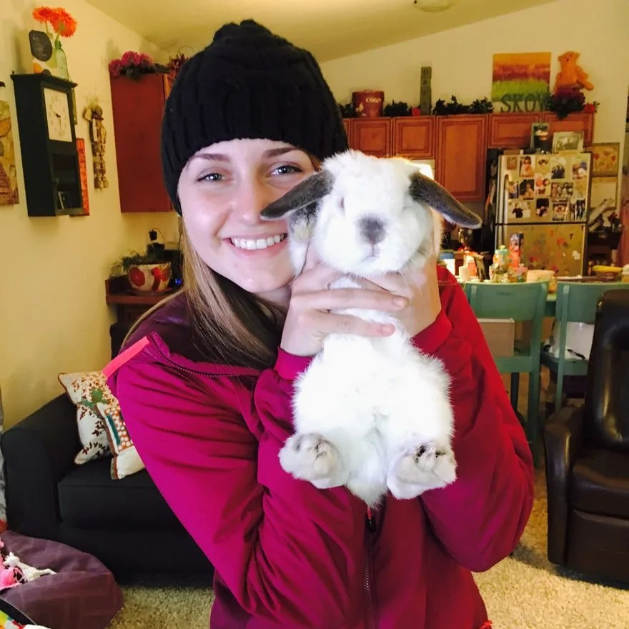 與大耳朵兔子的長途旅行,途中充滿驚喜!