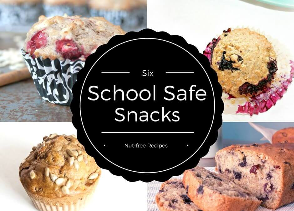 School Safe Snacks for the Kid's Lunchbox