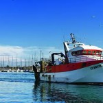 France, Hérault (34), Sète, bassin du Vieux Port, retour de pêche d'un chalutier à la criée