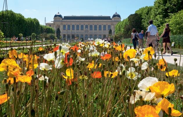 Jardin-des-plantes-630x405-C-OTCP-Amelie-Dupont-177-24