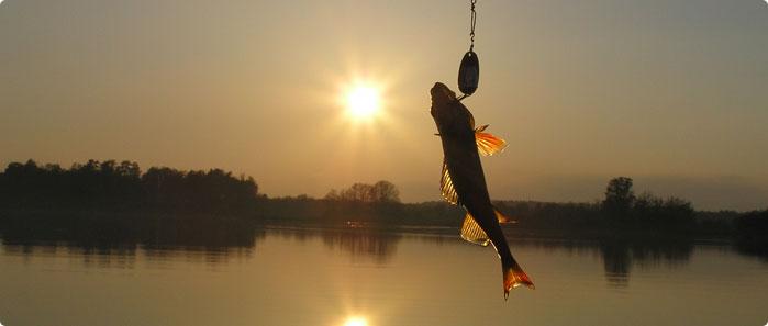 Рыболовный сезон объявлен открытым