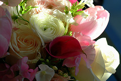 2273162770 91e5e29133 m Speaking of Love   Dont Forget Valentines Day Flowers