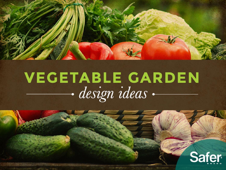 Fullsize Of Best Vegetables For Vertical Gardening