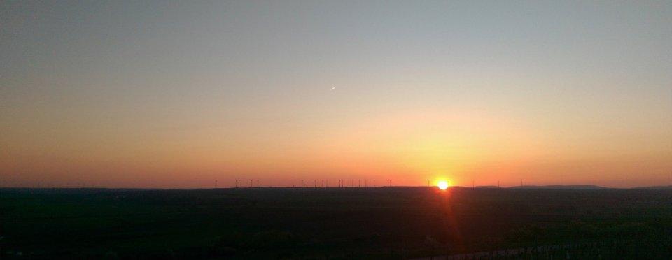 Sonnenuntergang in Rheinhessen
