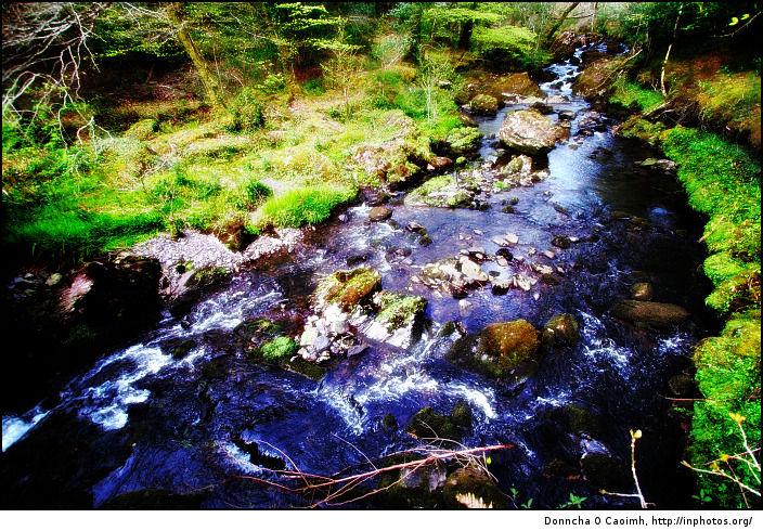 Glengarriff Stream