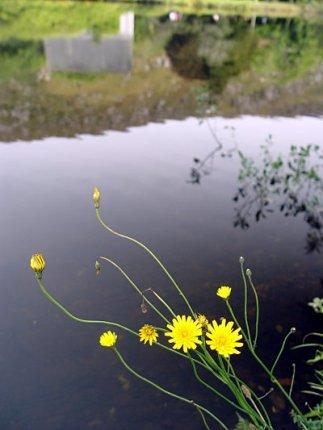 photoblog-20040926