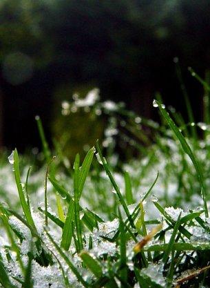 photoblog-20041231
