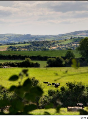 the-rolling-hills-of-the-irish-countryside