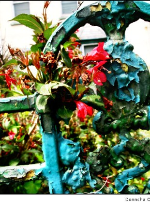 flowers and peeling paint