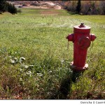 Fire Hydrant 3
