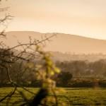 sunset-on-farmland