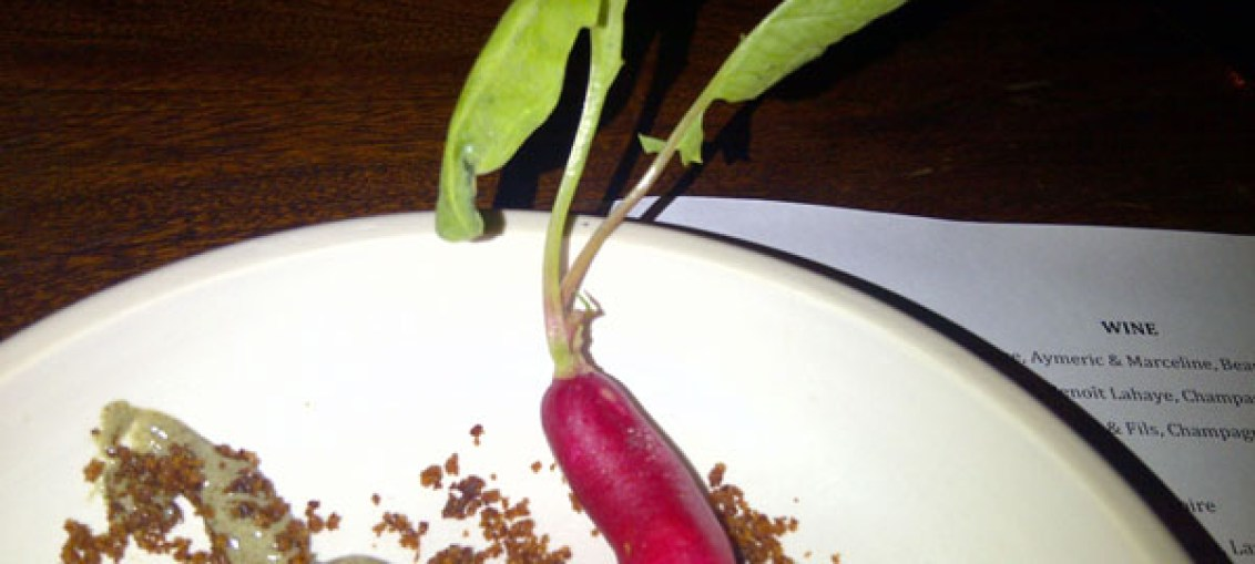 Rabbit ears radish, Young Turks at Ten Bells