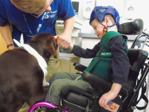 Luke gets a visit from the Doggie Brigade during his first week of rehab therapy.