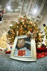 Trees sparkle with inspiration at the Holiday Tree Festival