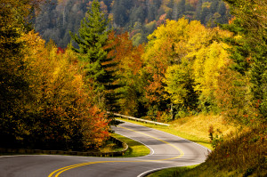 Road winding through the Smoky Mounatins