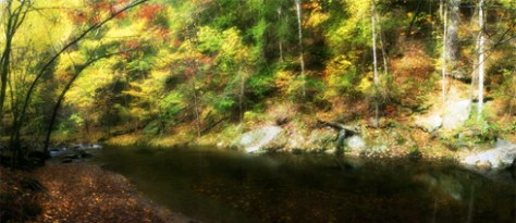Fall Colors in the Great Smoky Mountains