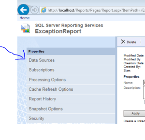 SSRS Manage Data Source Native Mode Shared