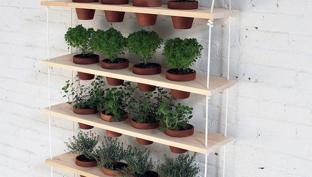 10 ideas para jardines verticales for Jardines verticales concepto
