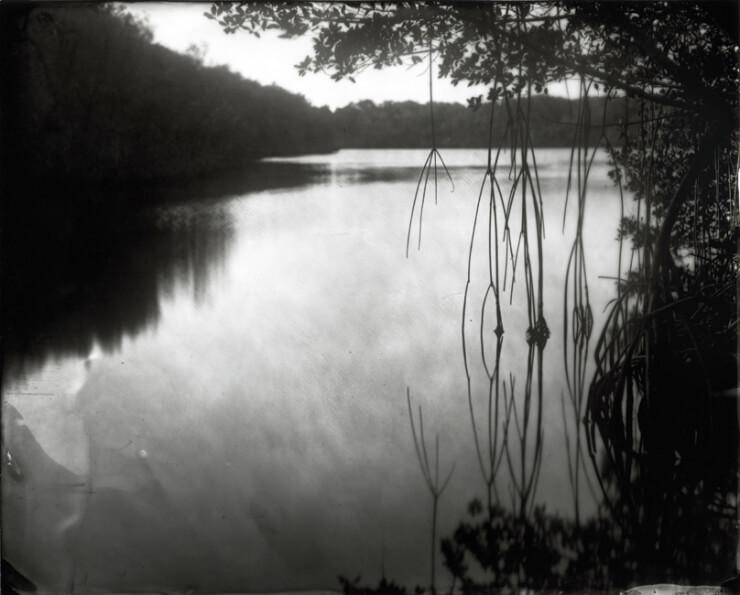 Film Photography8