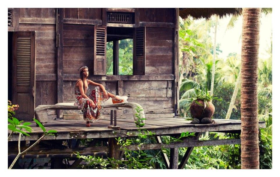 Jungle Picture