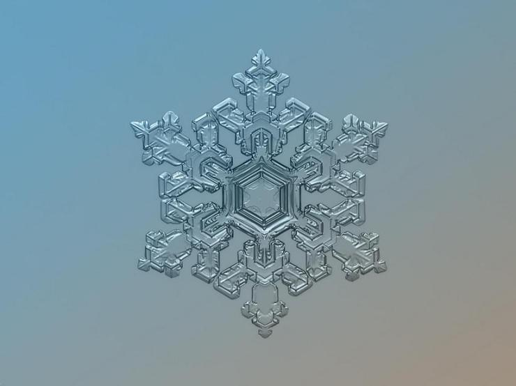 macro snow flake001