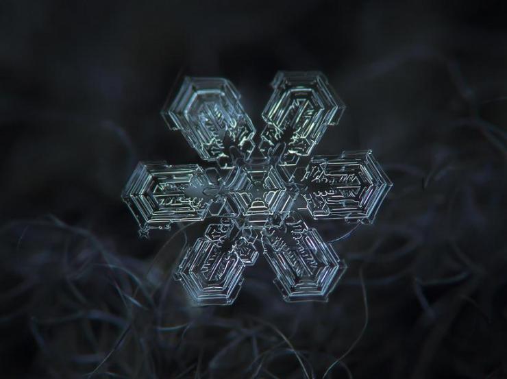 macro snow flake007
