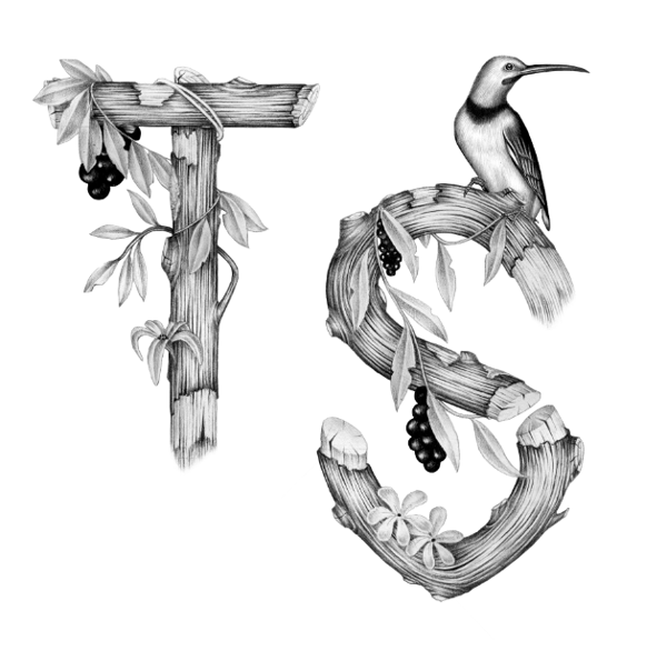 tropical lettering 2