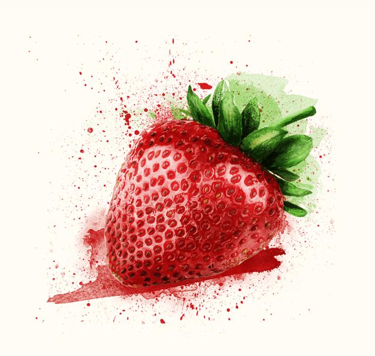 veg and fruit illustrations 15