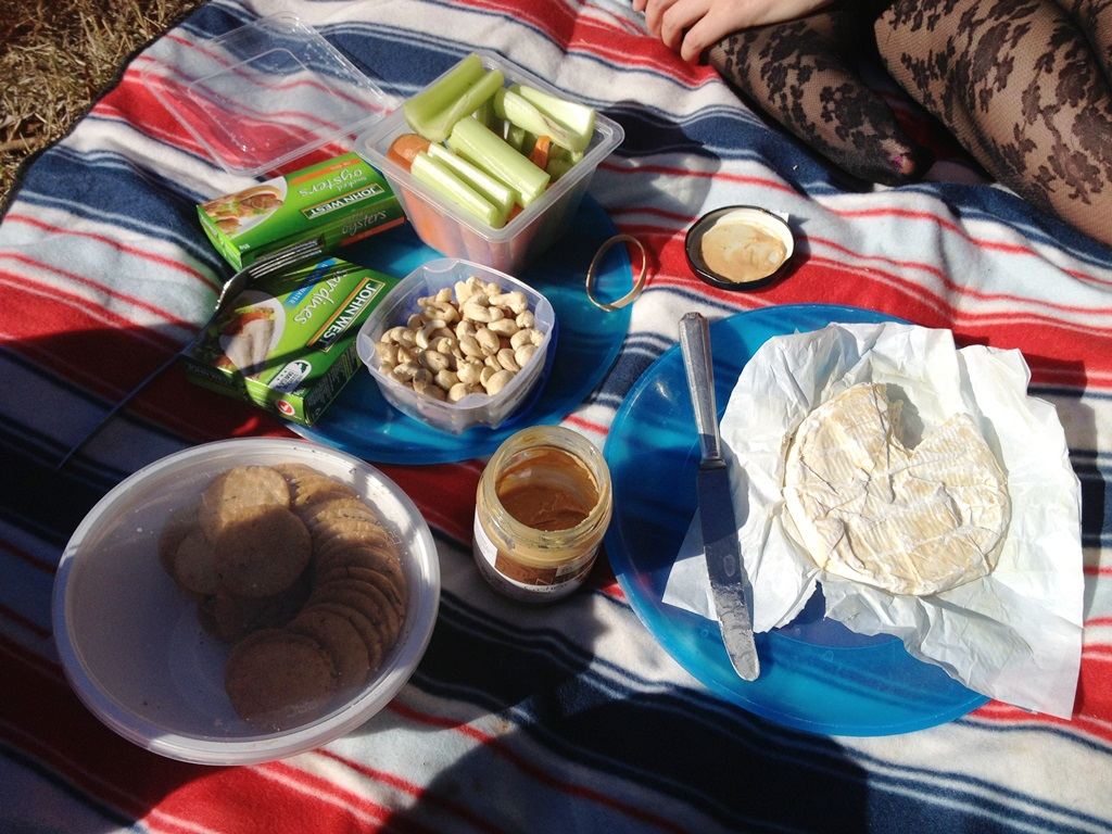 Picnic of Camembert cheese, nuts, celery, carrots, sardines and oysters