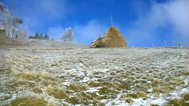 Haystacks in Goč area