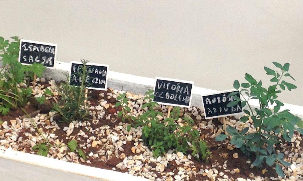 Porque_apresentar_as_criancas_a_jardinagem