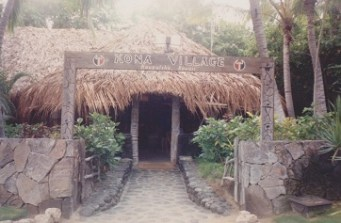 hawiian_grass_hut_kona_village