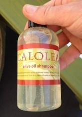 Calolea olive oil shampoo