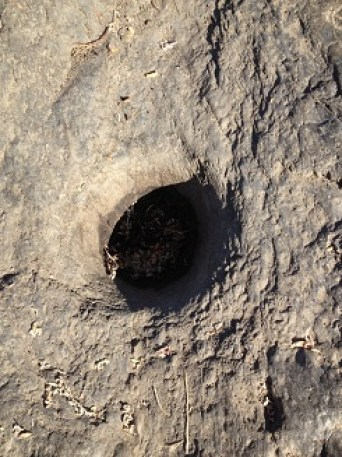 Indian grinding hole on the south bank of the American River north of Folsom