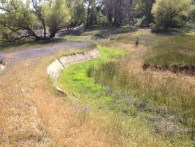 Trail along North Fork Ditch at Folsom Lake