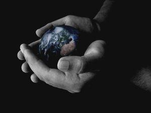 a terra em nossas mão - o site de sua ong é uma ferramenta importante para sua causa
