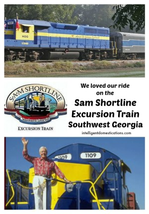 Sam Shortline Excursion Train.intelligentdomestications.com