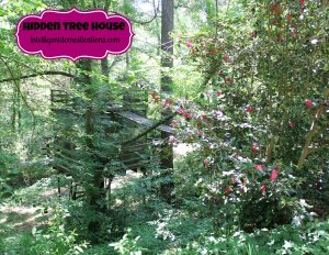 Hidden Treehouse. Intelligentdomestications.com