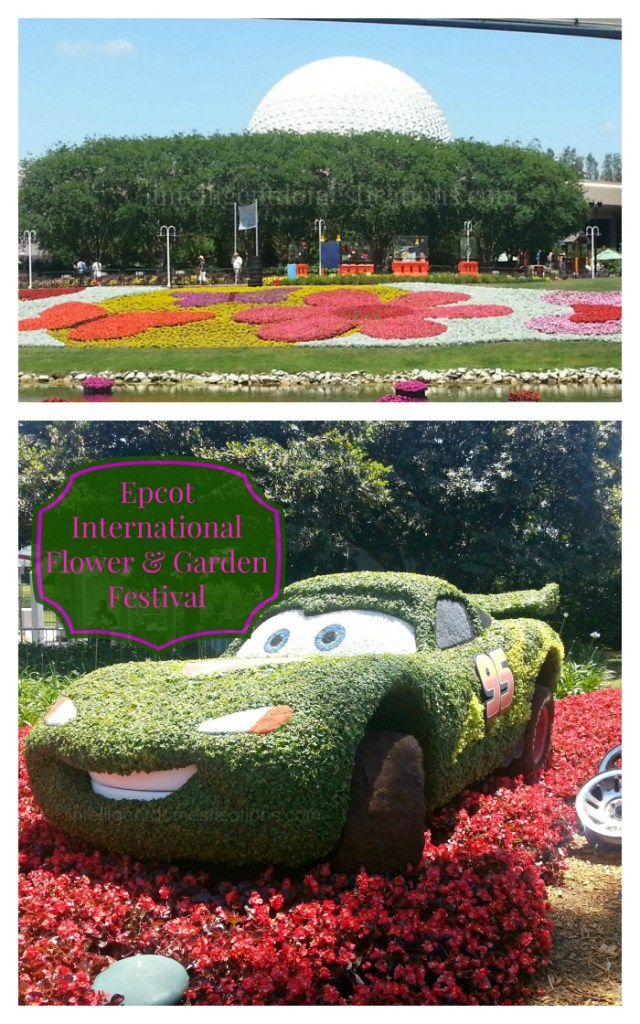 Five things to know before your Disney experience and Our trip to Epcot International Flower & Garden Festival