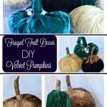 Frugal Fall Decor. DIY Velvet Pumpkins.www.intelligentdomestications.com