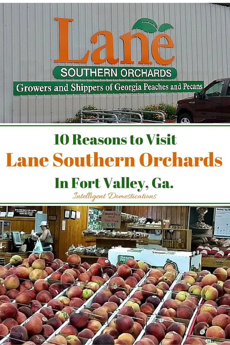 10 Reasons to Visit Lane Southern Orchards in Fort Valley, Ga.