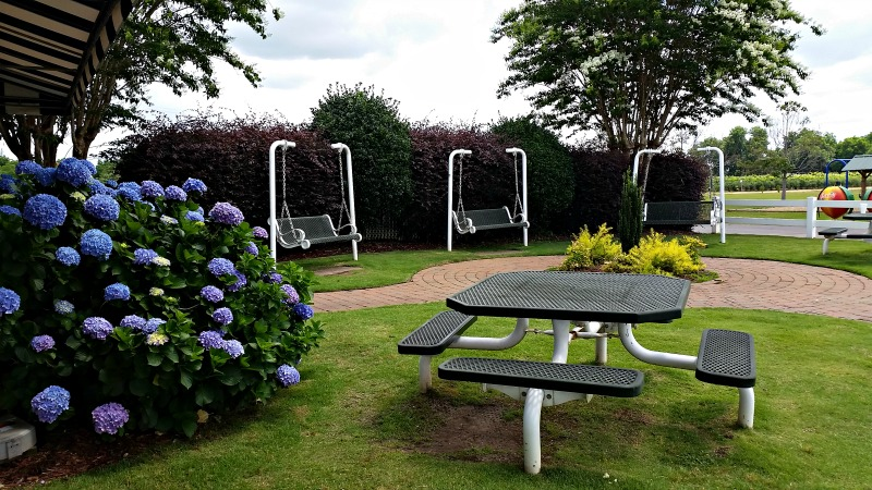 Sit and swing under the shade trees next to the gorgeous hydrangea on your visit to Lane Southern Orchards