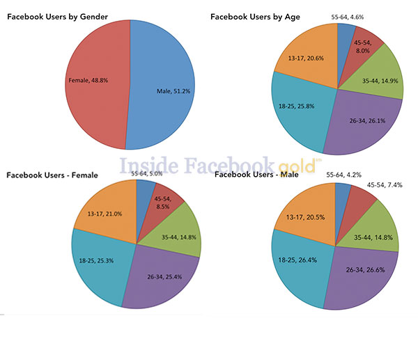 Facebook Demographic chart