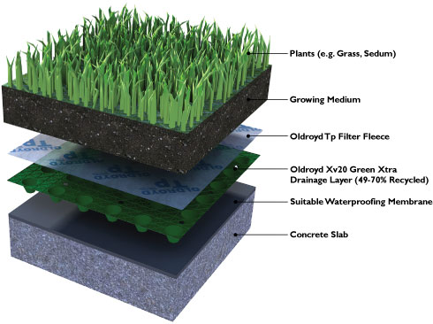 Layers of green roof