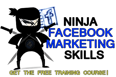 Directory Submission and Article Submission  Link Building Strategy Directory Submission and Article Submission  Link Building Strategy NinjaFBmarketingWIDGET Banner1