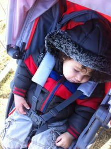 baby sleeping in graco evo mini